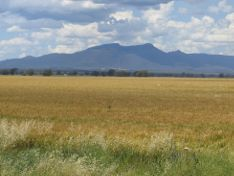 Narrabri photo 3